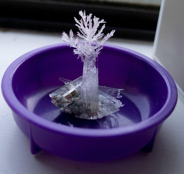 Выращивания кристаллов своими руками